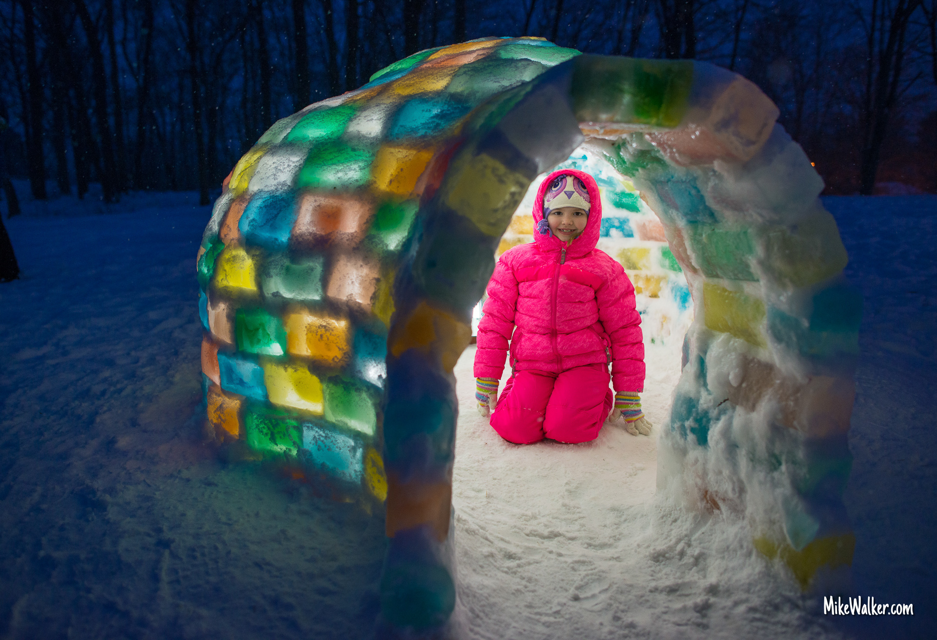 The Secret Igloo