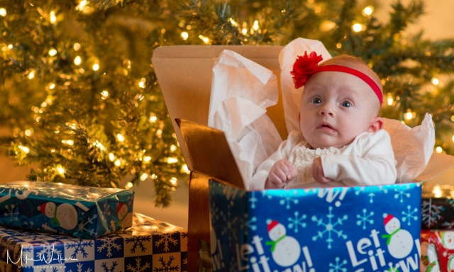 Baby wrapped in a Christmas box. Family photography by Mike Walker.