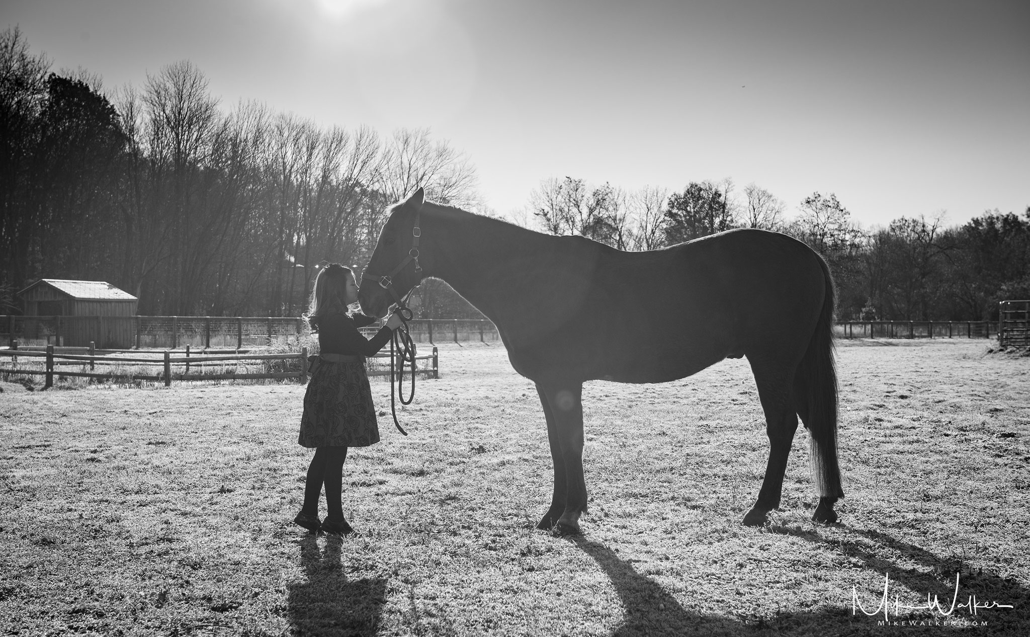 A young girl kissing a horse. Family photographer Mike Walker.