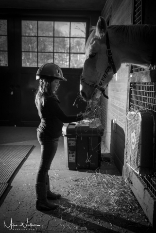 Child feeding a horse. Family photography © Mike Walker