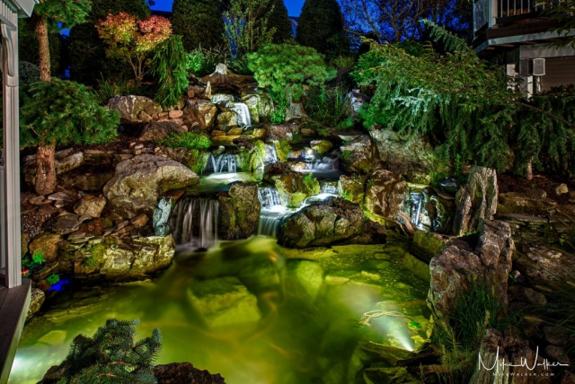 Water garden lit up at night. Commercial photography by Mike Walker.