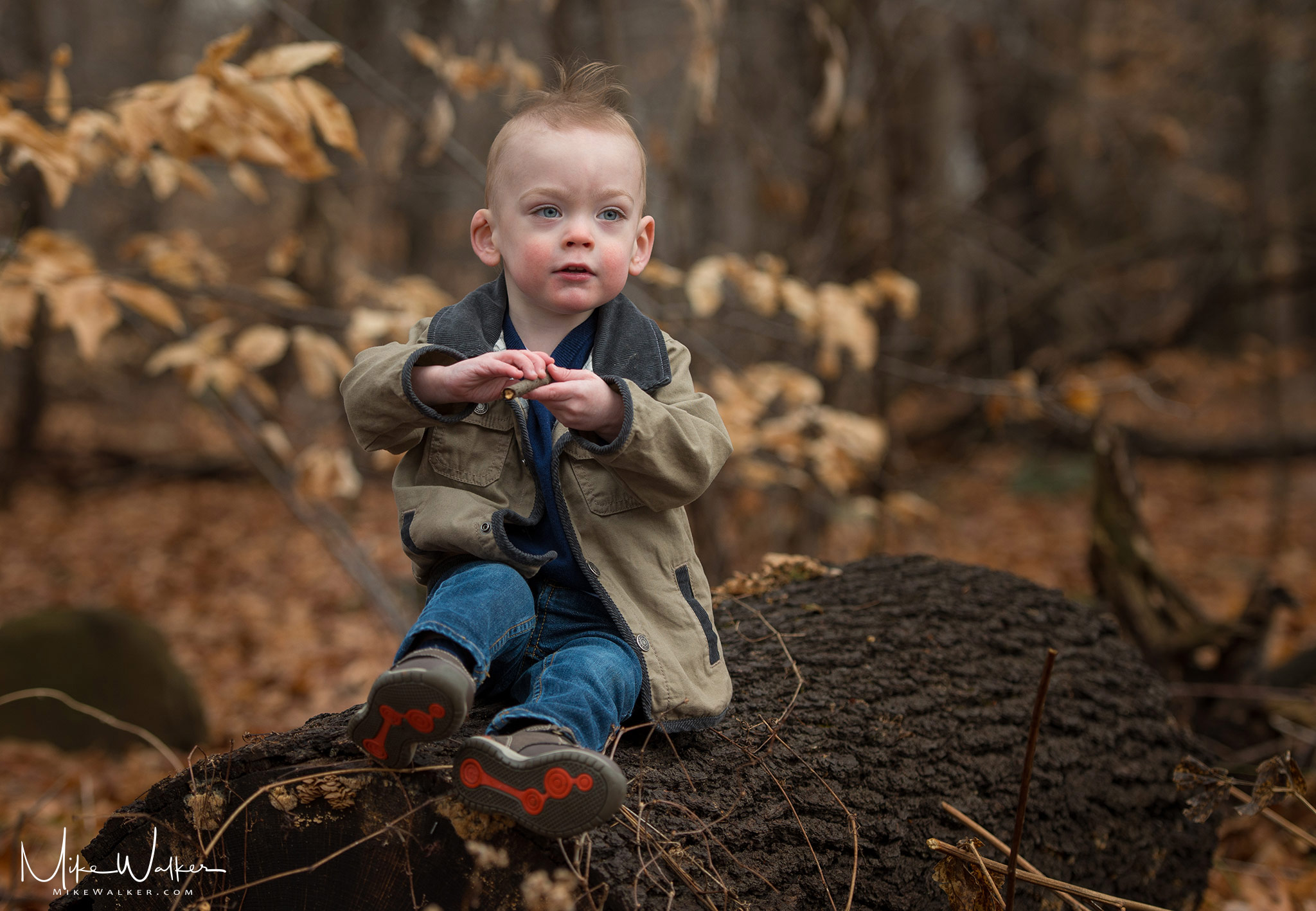 Two-year old playing in the woods. Family photography by Mike Walker.